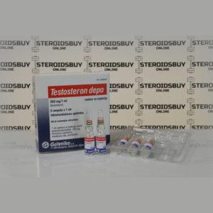 Packaging Testosteron Depo (Testosteron Enanthat) 250 mg Galenika