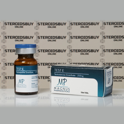 Packaging Test E ( Testosterone Enanthate) 250 mg Magnus Pharmaceuticals