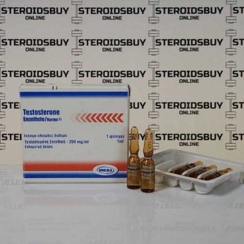 Packaging Testosterone Enanthate 250 mg Norma Hellas